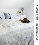 Stock photo a cat lying on a bed sweden 107150249