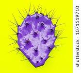 purple cactus. art design.... | Shutterstock . vector #1071519710