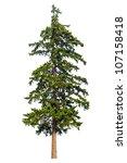 fir tree isolated on white...   Shutterstock . vector #107158418
