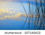 Morning Lake Landscape With...