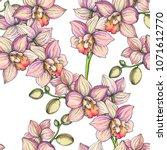 vector vintage seamless pattern ... | Shutterstock .eps vector #1071612770