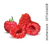 fresh  nutritious and tasty... | Shutterstock .eps vector #1071616628