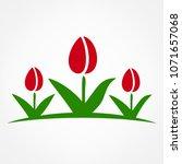 tulip logo. raster image. | Shutterstock . vector #1071657068