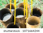 nectar from sugar palm in... | Shutterstock . vector #1071664244