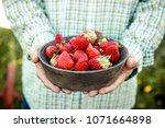 fresh fruit. farmer with bowl... | Shutterstock . vector #1071664898