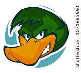 Angry Duck Head Mascot