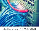 ethernet cables connected to... | Shutterstock . vector #1071679370