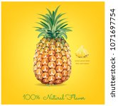 pineapple slice. illustration... | Shutterstock .eps vector #1071697754