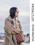 fashion details. fashion... | Shutterstock . vector #1071740264