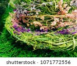 a beautiful spring green floral ... | Shutterstock . vector #1071772556
