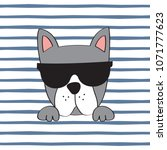 french bulldog with sunglasses... | Shutterstock .eps vector #1071777623