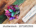 group of painted paper... | Shutterstock . vector #1071852503