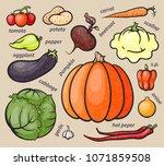 set of colorful vegetables ...   Shutterstock .eps vector #1071859508