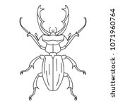 beetle icon. simple element... | Shutterstock .eps vector #1071960764