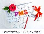 menstrual cycle. hygiene...   Shutterstock . vector #1071977456