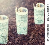 Small photo of Dollars growing out of the ground. The concept of profit, growth, income, profitable investment