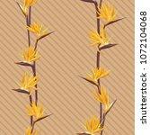 tropical flower bird of... | Shutterstock .eps vector #1072104068