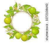 bergamot  vector frame | Shutterstock .eps vector #1072108640
