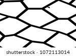 black and white irregular grid  ... | Shutterstock .eps vector #1072113014
