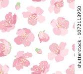 cherry sakura bright pink bloom ... | Shutterstock .eps vector #1072113950