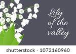 may lily. vector illustration... | Shutterstock .eps vector #1072160960