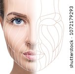 graphic lines showing facial... | Shutterstock . vector #1072179293