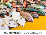 many fresh colourful exotic...   Shutterstock . vector #1072251749