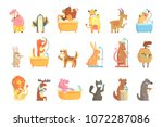 cute animals bathing and... | Shutterstock .eps vector #1072287086
