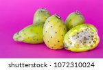 prickly pears on a pink... | Shutterstock . vector #1072310024