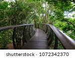 the canopy walk skybridge in... | Shutterstock . vector #1072342370