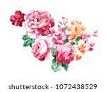 graceful flowers  the leaves... | Shutterstock . vector #1072438529