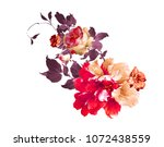 graceful flowers  the leaves... | Shutterstock . vector #1072438559