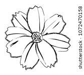 grunge spring natural flower... | Shutterstock .eps vector #1072470158