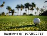 golf ball on green grass  palm... | Shutterstock . vector #1072512713