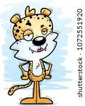 a cartoon illustration of a...   Shutterstock .eps vector #1072551920