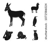 different animals black icons...   Shutterstock .eps vector #1072586024