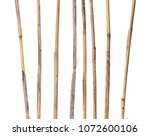 dry reed sticks isolated on... | Shutterstock . vector #1072600106