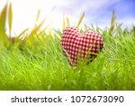 heart in the grass | Shutterstock . vector #1072673090