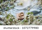 brown box. box for present.... | Shutterstock . vector #1072779980