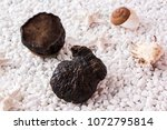 nourishing food wild purple...   Shutterstock . vector #1072795814