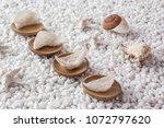 nourishing food image   Shutterstock . vector #1072797620