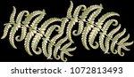 fern frond herbs  tropical... | Shutterstock .eps vector #1072813493