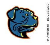 mascot icon illustration of... | Shutterstock .eps vector #1072821230