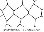 black and white irregular grid  ... | Shutterstock .eps vector #1072872734