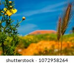 view of the nature  in the... | Shutterstock . vector #1072958264
