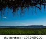 view of the nature  in the... | Shutterstock . vector #1072959200