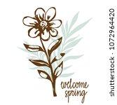 chamomile flower  leaves hand... | Shutterstock .eps vector #1072964420