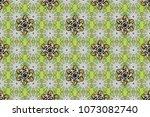 paisleys elegant floral raster... | Shutterstock . vector #1073082740
