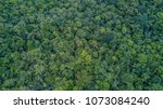aerial top view forest  texture ... | Shutterstock . vector #1073084240