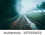 atmospheric muddy path heading... | Shutterstock . vector #1073103623